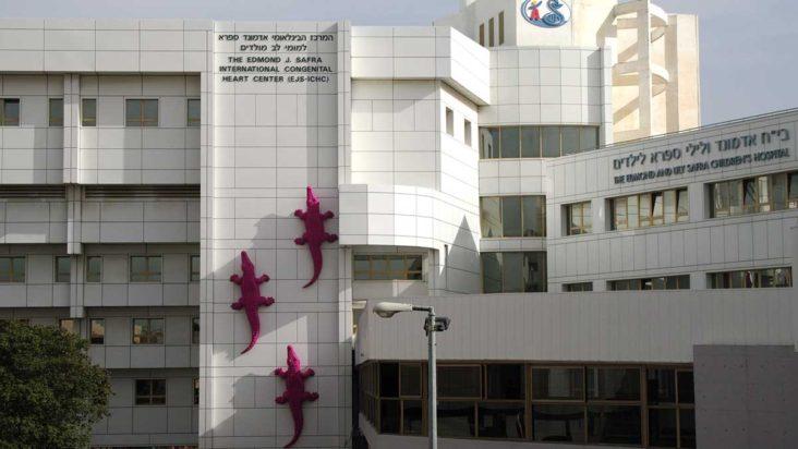 Tel Hashomer Children's Hospital Safra Building